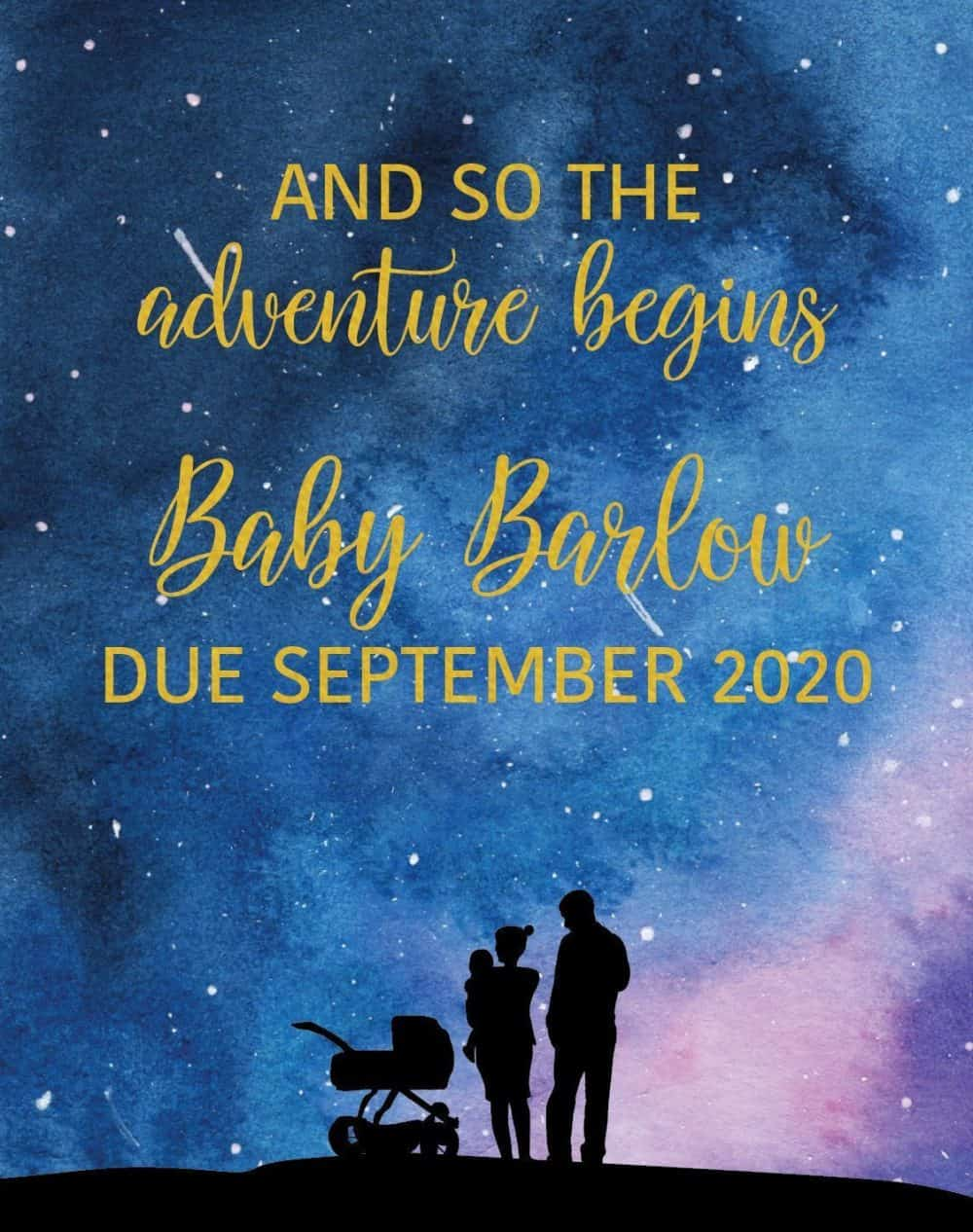 Pregnancy Announcement Wine Label Stickers, AND SO THE adventure begins, Baby Celebration Custom Bottle Label, Starlight bwinelabel137