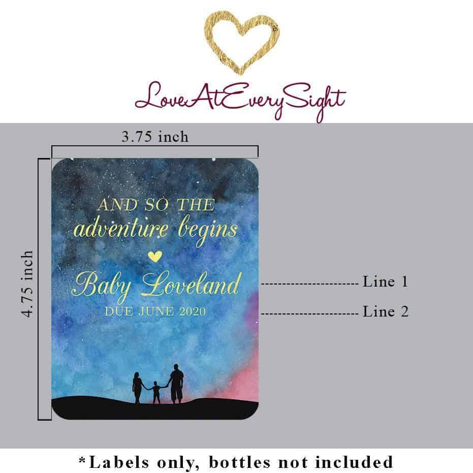 Pregnancy Announcement Wine Label Stickers, AND SO THE adventure begins, Baby Celebration Custom Bottle Label, Family Theme bwinelabel142