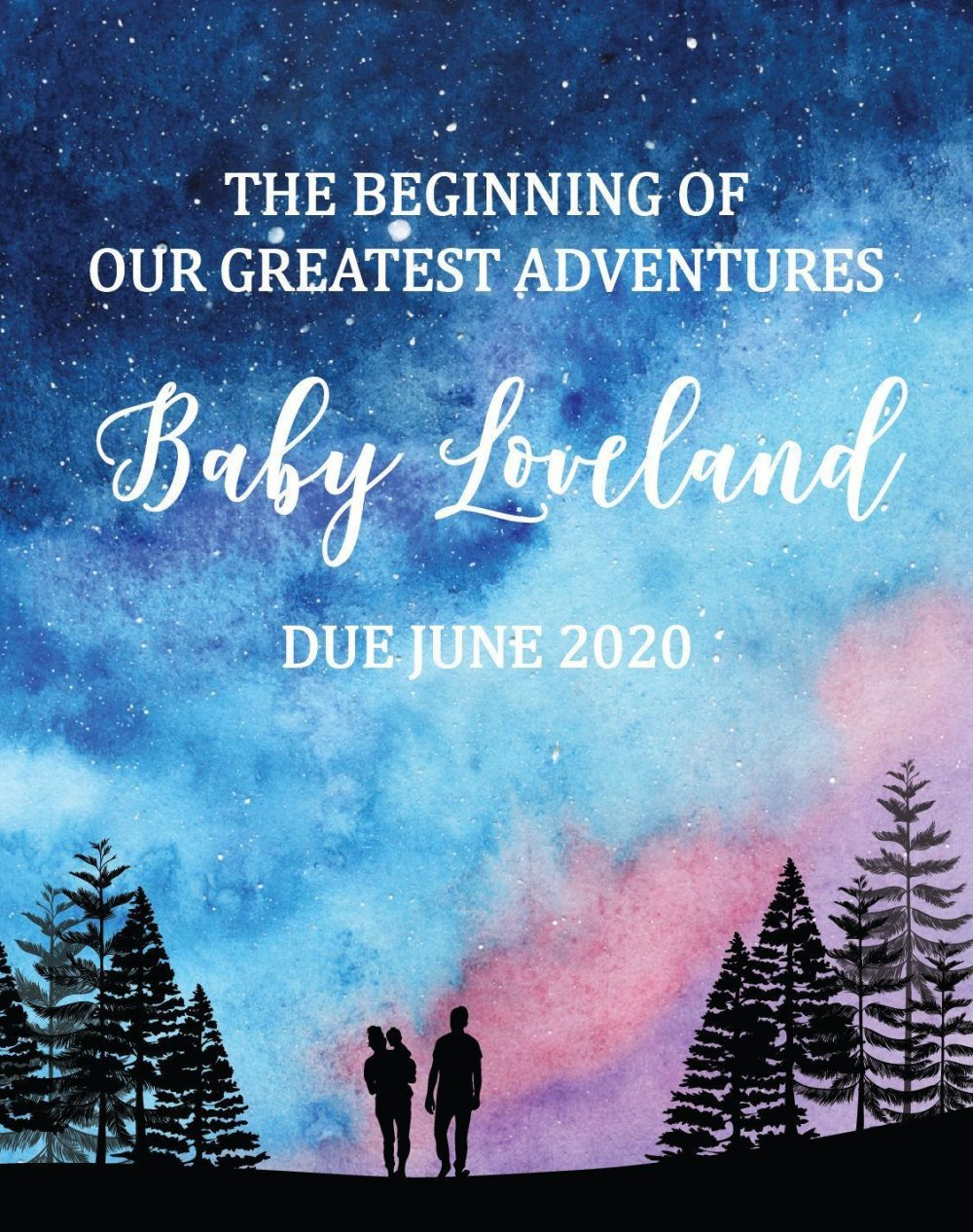 "Pregnancy Announcement Wine Label Stickers, ""The beginning of our greatest adventures"", Baby Celebration Custom Bottle Label, Eve Theme bwinelabel140"