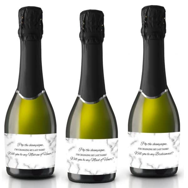Bridesmaid, Maid & Matron of Honor Bridal Proposal Set, Bridal Duty Set, Bridesmaid Thank You Gift Set, Mini Champagne Bottle Stickers mn186