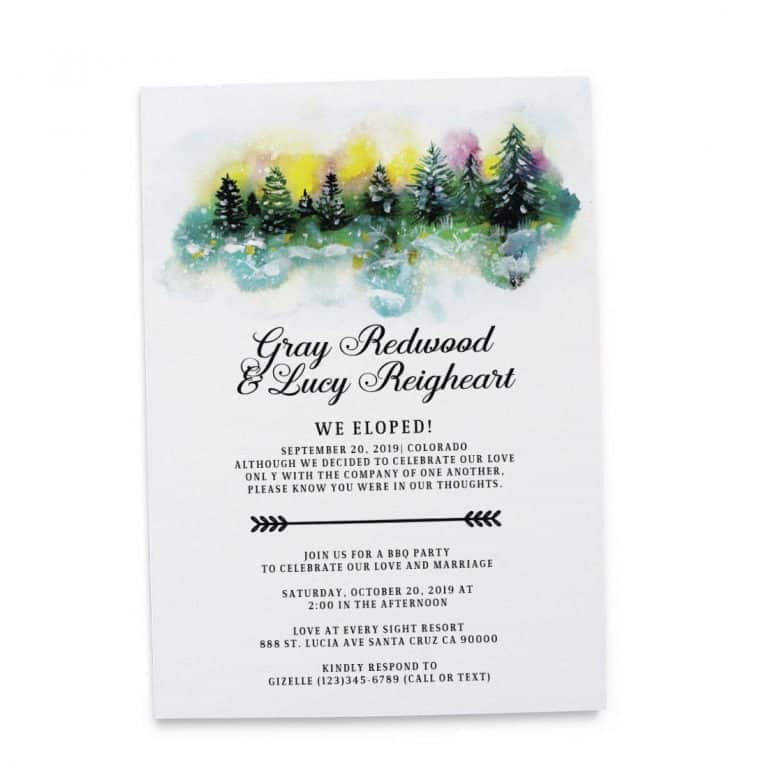 We Eloped Winter Elopement Cards, BBQ Party, Wedding Reception Casual Party Invitation Cards  elopement147