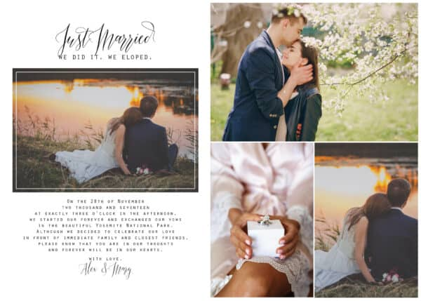Tied the Knot Elopement Announcement Postcards, We Eloped Postcards Add Your Own Photo elopement226