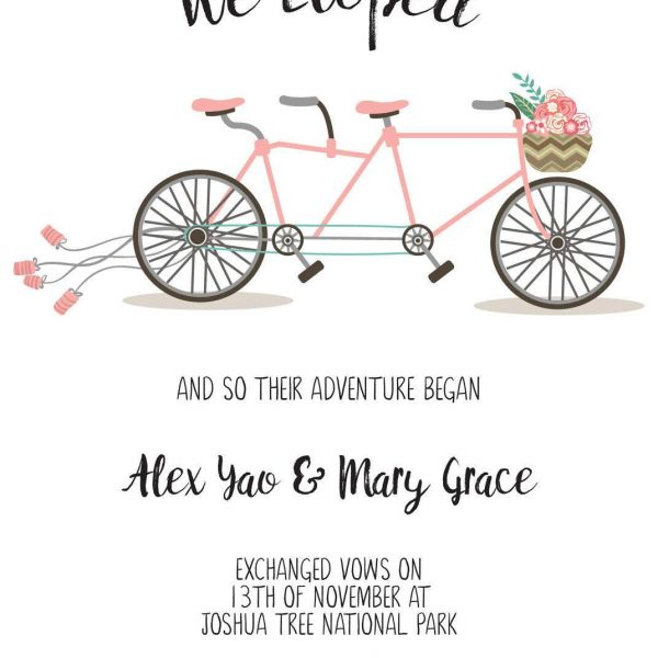 And so the adventure began, Bicycle Elopement Announcement Cards