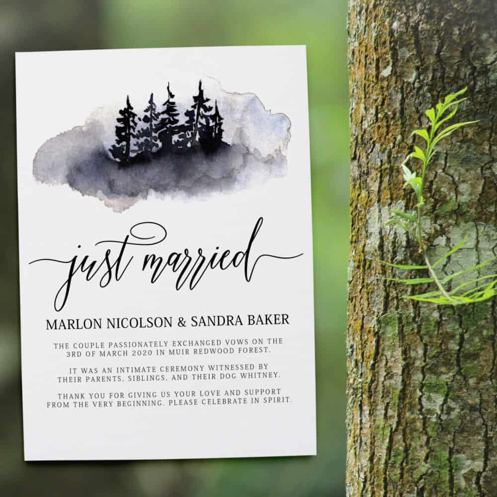 "We Are Married Announcement, ""Just Married!"" , After Wedding Announcement Flat Cards, Marriage Announcement, Custom, Cloudy Design #356 elopement356"
