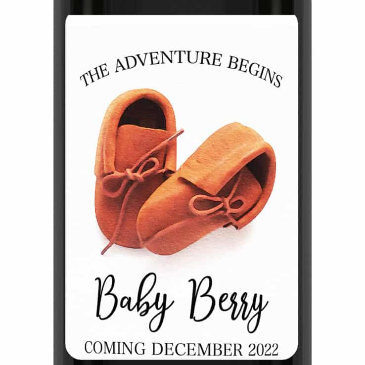 The adventure begins pregnancy announcement wine labels cute shoes bwinelabel192